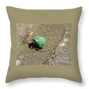 Northern Leopard Frog At The Lake Throw Pillow
