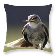 Northern Mockingbird - Lunch Is On The Way Throw Pillow