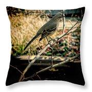 Northern Mockingbird On The Highline Throw Pillow
