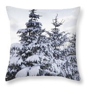 Northumberland, England Snow-covered Throw Pillow