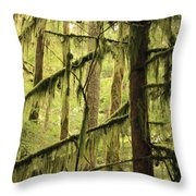 Northwest Mossy Tree Throw Pillow