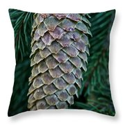Norway Spruce Cone Throw Pillow
