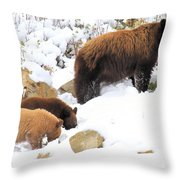 Nose Lessons Throw Pillow