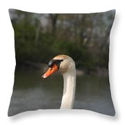 Not For Sale Test Image Throw Pillow