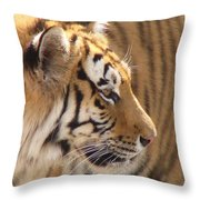 Not Looking At You Throw Pillow