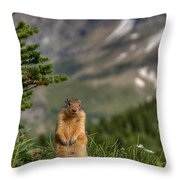 Not Much...whatz Up With You? Throw Pillow