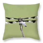 Dragonfly - Not Wilbur's And Orville's Idea Was It Throw Pillow