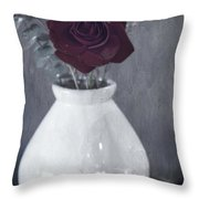 Nothing's Perfect Throw Pillow