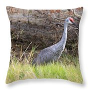 November Sandhill Crane Throw Pillow