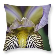 Now That's A Beauty Throw Pillow