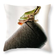 Now What? Throw Pillow