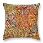 Nuge Art Throw Pillow