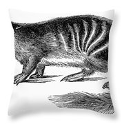 Numbat Throw Pillow