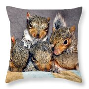 Nut Brothers Throw Pillow