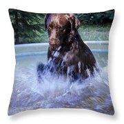 Nute Splashing Throw Pillow