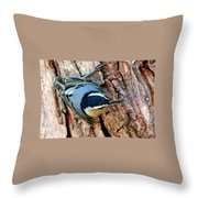Nuthatch Heading Down Throw Pillow
