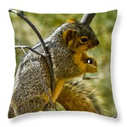 Nuts And Seeds Make A Great Lunch Throw Pillow