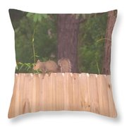 Nuts For A Squirrel Throw Pillow
