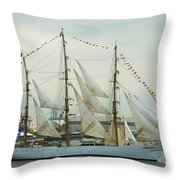 Nve Cisne Branco Passing By Fort Mchenry Throw Pillow