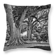Oak Alley Backyard Monochrome Throw Pillow