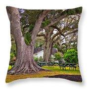 Oak Alley Backyard Throw Pillow