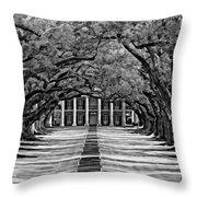 Oak Alley Monochrome Throw Pillow