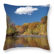 Oak Creek Reflection Throw Pillow