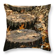 Oak Creek Steps Throw Pillow