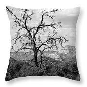Oak Creek Tree Throw Pillow