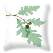 Oak Leaves, X-ray Throw Pillow
