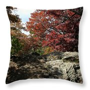 Oak Rock Throw Pillow