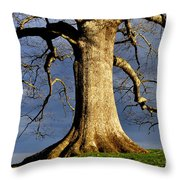 Oak Tree And Storm Clouds Throw Pillow