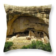 Oak Tree House Throw Pillow