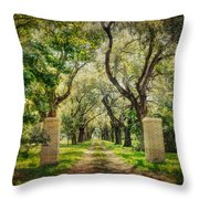 Oak Tree Lined Drive Throw Pillow