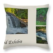 Oakwood Exhibit Throw Pillow