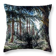 Oasis At Death Valley Throw Pillow