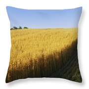 Oat Crops On A Landscape, County Dawn Throw Pillow