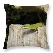 Observation Post Throw Pillow