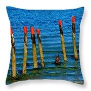Ocean Eleven Throw Pillow