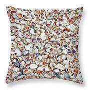 Ocean Shells Throw Pillow