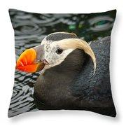 Ocean Wonder Throw Pillow