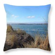 Beach Oceanview Throw Pillow