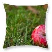 October Apple Throw Pillow