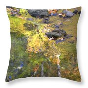 October Colors Reflected Throw Pillow