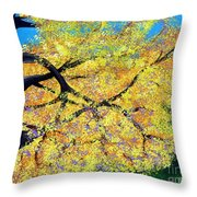 October Fall Foliage Throw Pillow