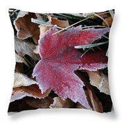 October Frost Throw Pillow