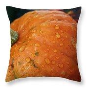 October Rain Drops Throw Pillow