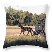 October Road Throw Pillow