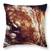 Octopus Macro Throw Pillow