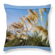 Of Sun And Sky And Wind Throw Pillow